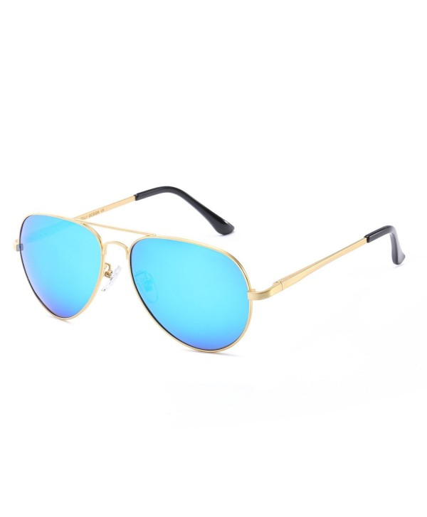 Classic Aviator Polarized Sunglasses Protection
