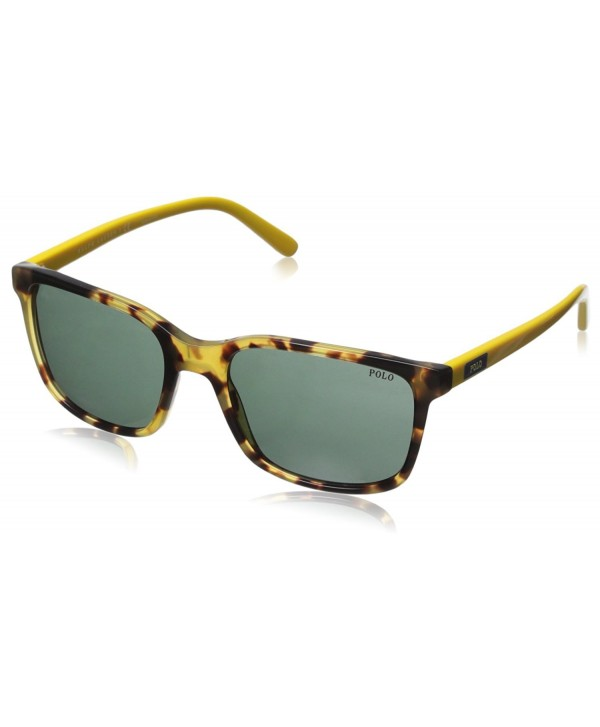 Polo Ralph Lauren 0PH4103 Sunglasses